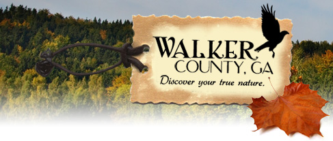 Walker County, GA: Discover your true nature